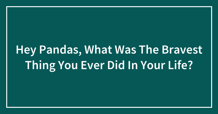 Hey Pandas, What Was The Bravest Thing You Ever Did In Your Life? (Closed)
