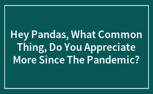Hey Pandas, What Common Thing, Do You Appreciate More Since The Pandemic?