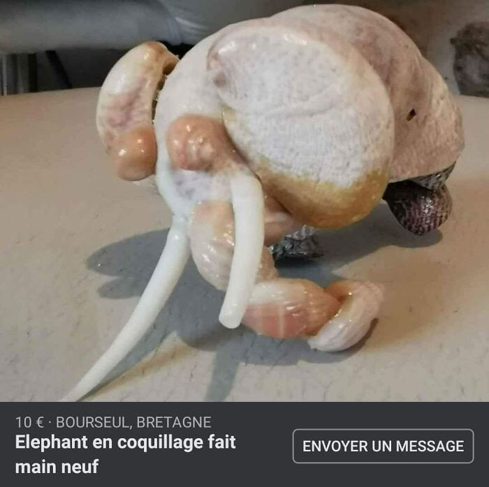 The Caption Says It's An Elephant, Handmade Out Of Sea Shells. I Thought It Was A Very Weird Raw Chicken