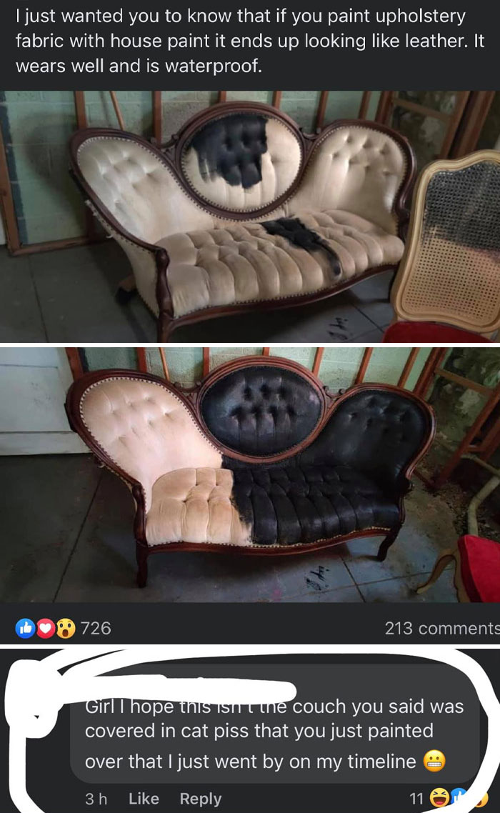 She Painted Her Couch With House Paint