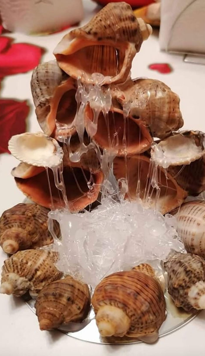 """Found In The Wild On Market Place Handmade Sea Shell """"Fountain"""""""