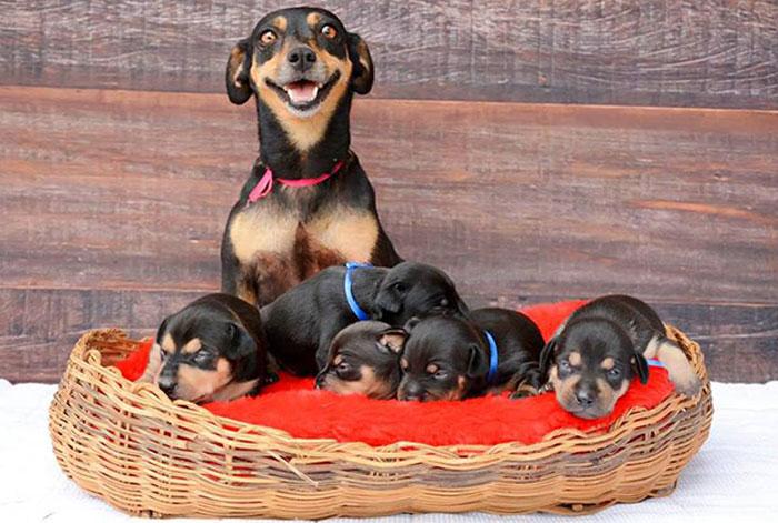 La madre más feliz