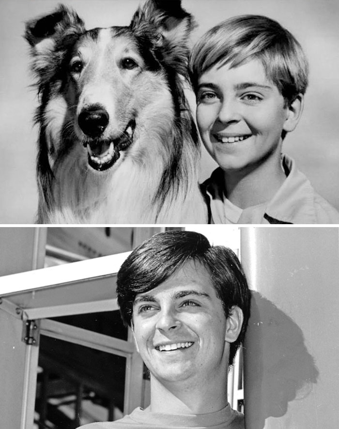 In The '50s, Tommy Rettig Was The Adorable Boy Whose Sidekick Was The Ubiquitous Lassie. After Lassie He Found Work As A Computer Software Engineer.