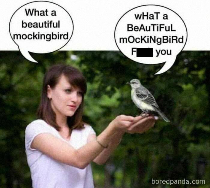Funny-Literal-Memes