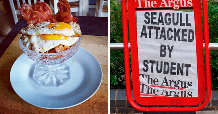 Hilarious Times People Caught The UK Going 'Too Far' And Documented It In These 50 Pics