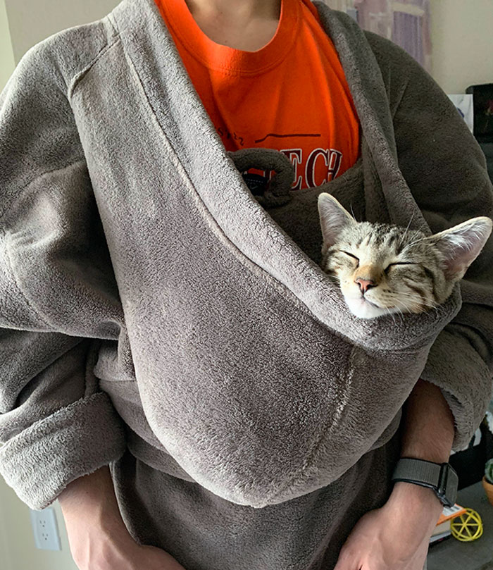 """Everyday Momo Cries Until My Boyfriend Puts Him In His """"Hammock"""" For Nap Time"""
