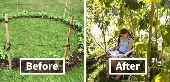 50 Times People With A Green Thumb Shared Some Awesome Gardening Ideas