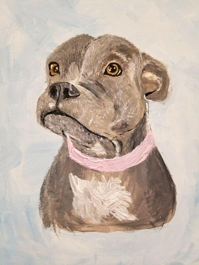My Sisters Dog Gemma
