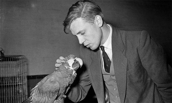 Sir David Attenborough As A Young Man, Late 1950s