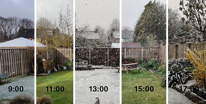 The Weather In The Netherlands Today