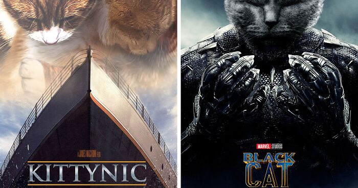 Artist Recreates Movie Posters And Replaces Actors With Cats And Dogs (19 Pics)