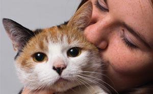 30 Actos increíblemente amables que las mascotas hicieron por sus dueños y que demuestran que el amor de una mascota no tiene límites