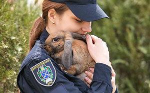This Bunny Studied To Be A Police Officer For A Day