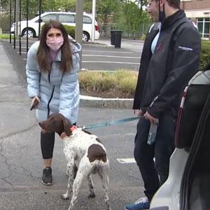 Esta reportera informaba sobre un cachorro robado cuando lo vio en la calle, siendo paseado por quien lo robó