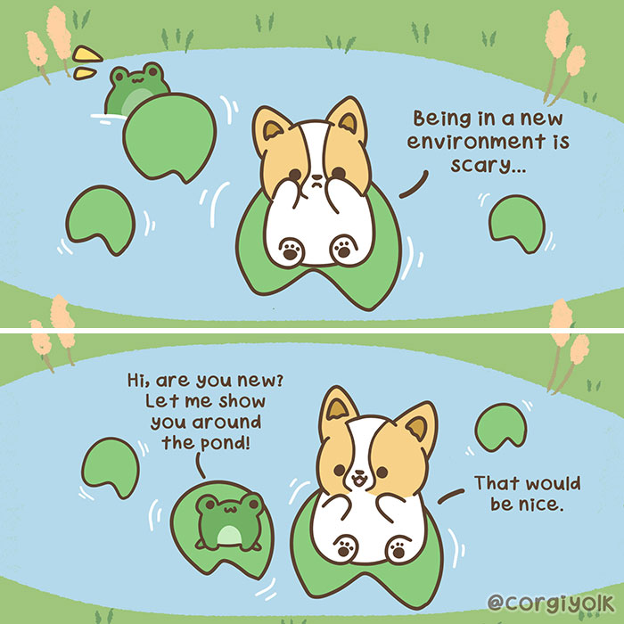 My 30 Wholesome Comics Featuring A Corgi And His Adventures With Other Animal Friends