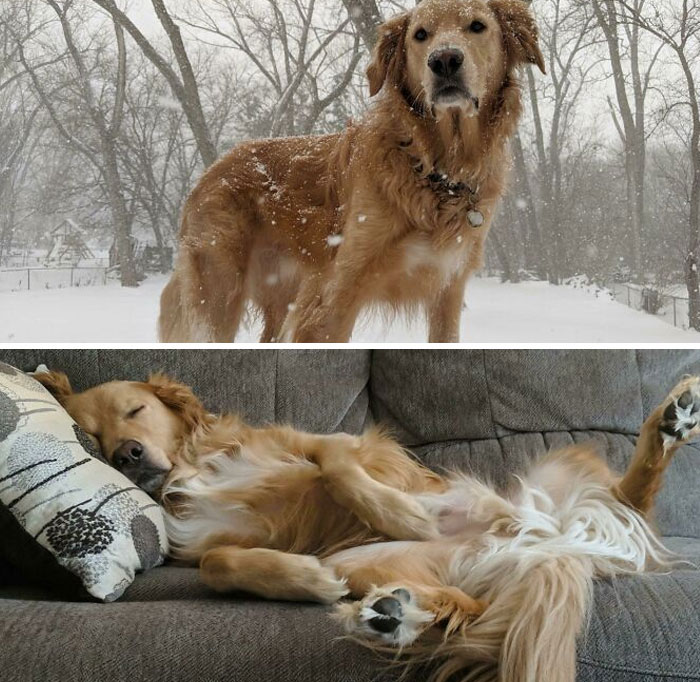 The Before And After Of Playing In The Snow