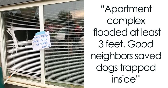 50 Times Neighbors Acted So Wholesomely, It Restored These People's Faith In Humanity