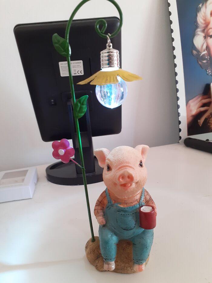 Piggy Light!