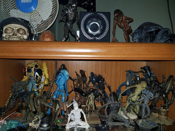 Xenomorphs, The Runner And Warrior On The Top Were The First Ones I Got And Were Also The Very Last Gifts I Ever Received From My Late Wife