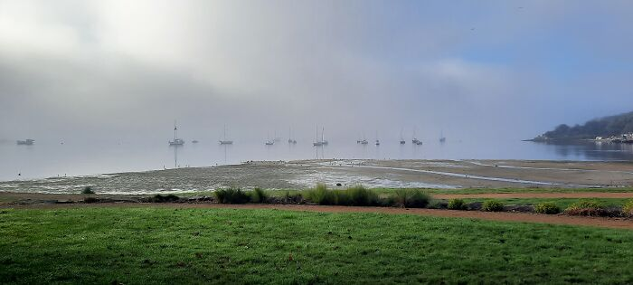 Morning Fog By The Water