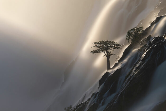 Landscapes, Waterscapes, And Flora: Finalist: 'Tree Of Life' By anette Mossbacher, Ruacana Falls, Namibia