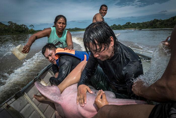 Human/Nature, Finalist: 'Dolphin's Hug' By Jaime Rojo, Puerto Nariño, Colombia