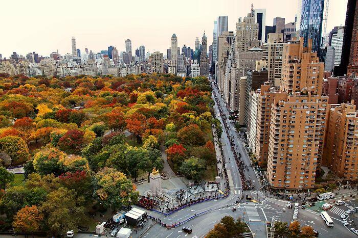 Central Park en otoño, Nueva York