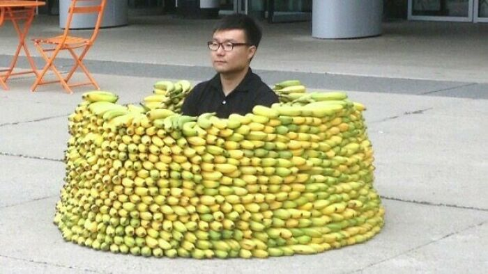 45 People Who Kept Their Cool In A Rather Unusual Situation