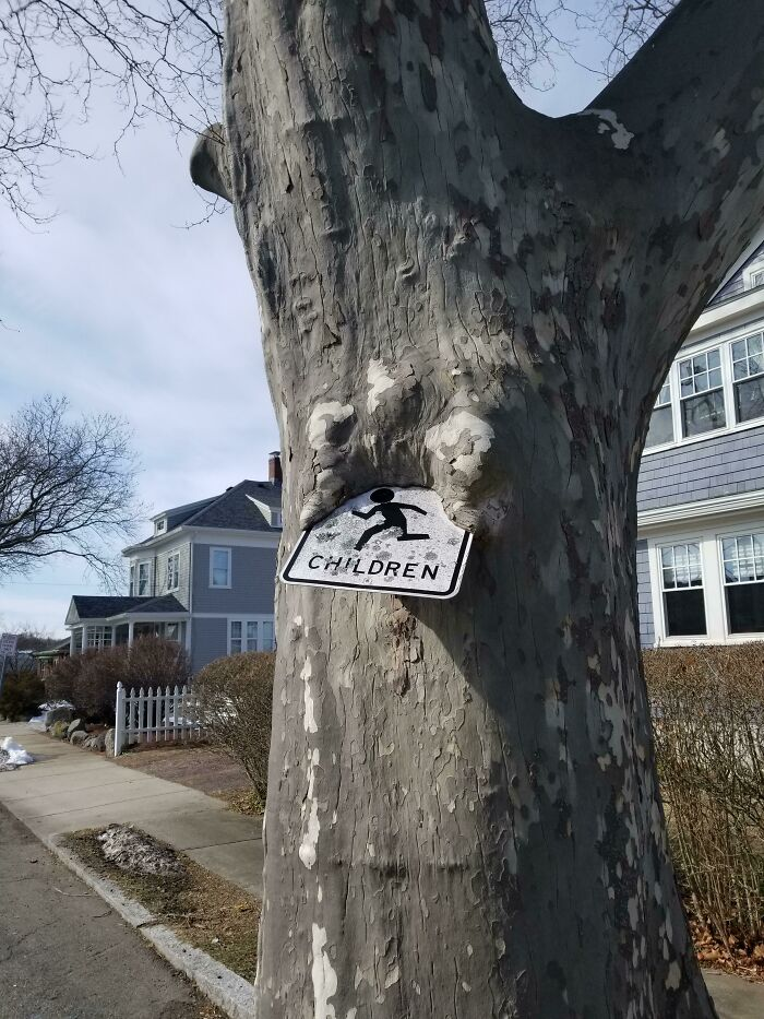 Tree Consuming Children... Sign