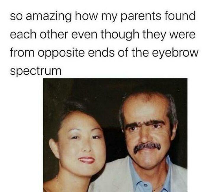 The Eyebrow Spectrum