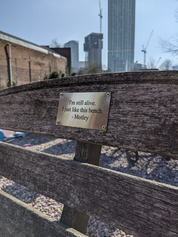This Bench In Manchester, UK