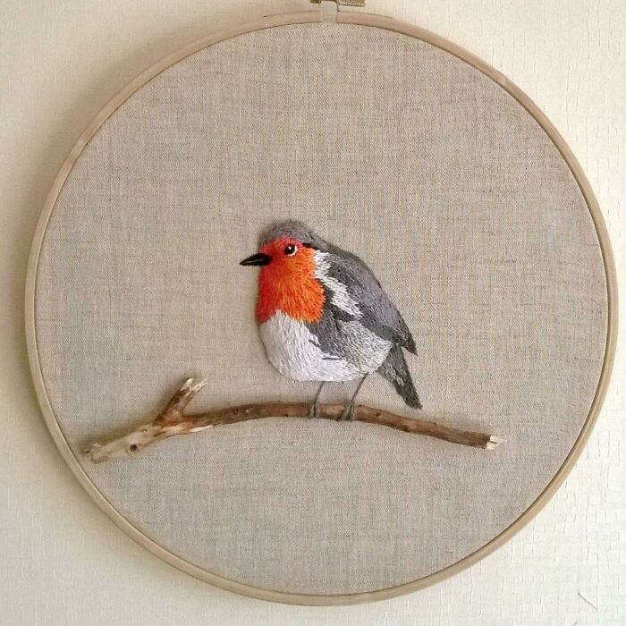 My Little Robin! What Do You Think, Do You Like It Too?