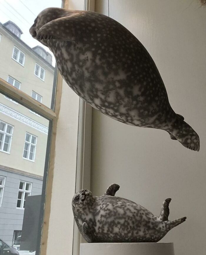 Chubby Seals Crafted In Ceramics By My Mom