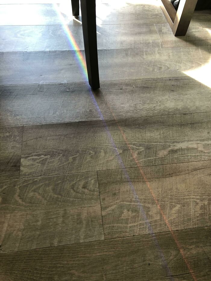 The Sun On My Window Made A Rainbow That's Split In Half By My Chair Leg