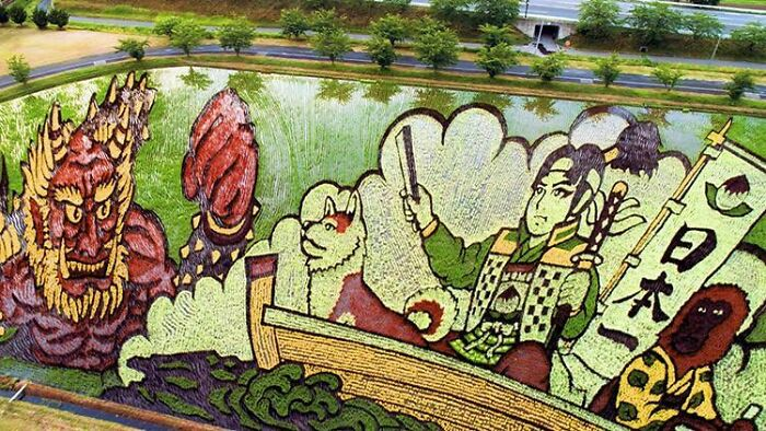 This Is A Rice Paddy. Farmers In Japan Plant Specific Rice Species To Make These Amazing Artworks