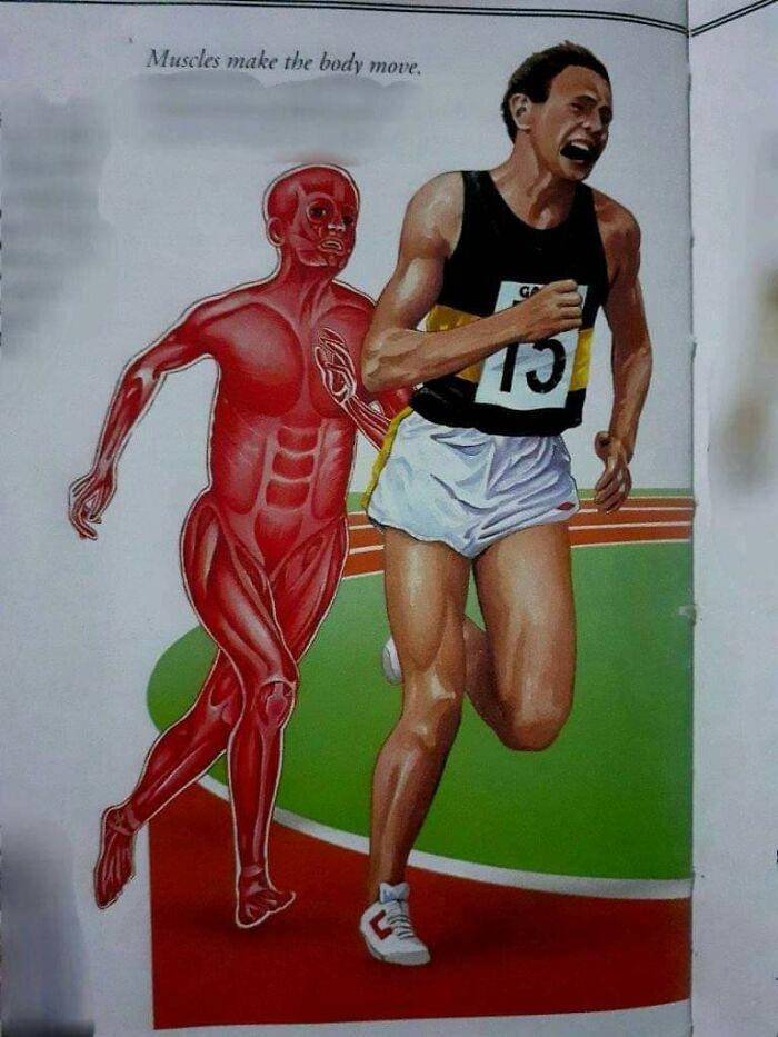 El hombre músculo