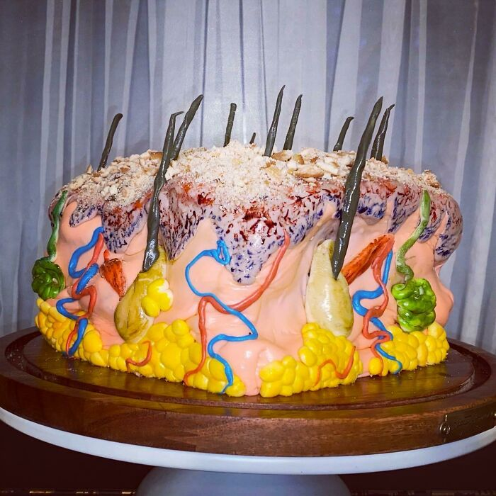 """The """"Skin"""" Cake I Made To Celebrate The Beginning Of Dermatology Residency. Everyone Thought It Was Delicious"""