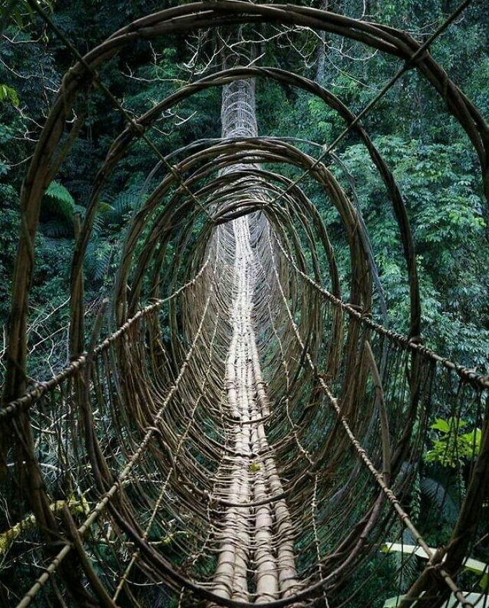 This Bridge In India...