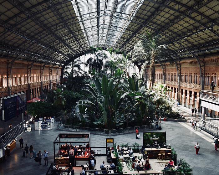 Jardín botánico en la estación de tren de Atocha en Madrid