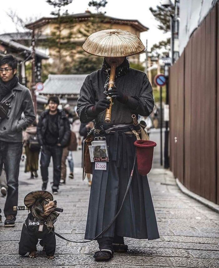 Somewhere In Kyoto, Japan, There's This Man And His Dog. He Plays The Flute, The Dog Is Cute, And That's How They Earn Some Loot