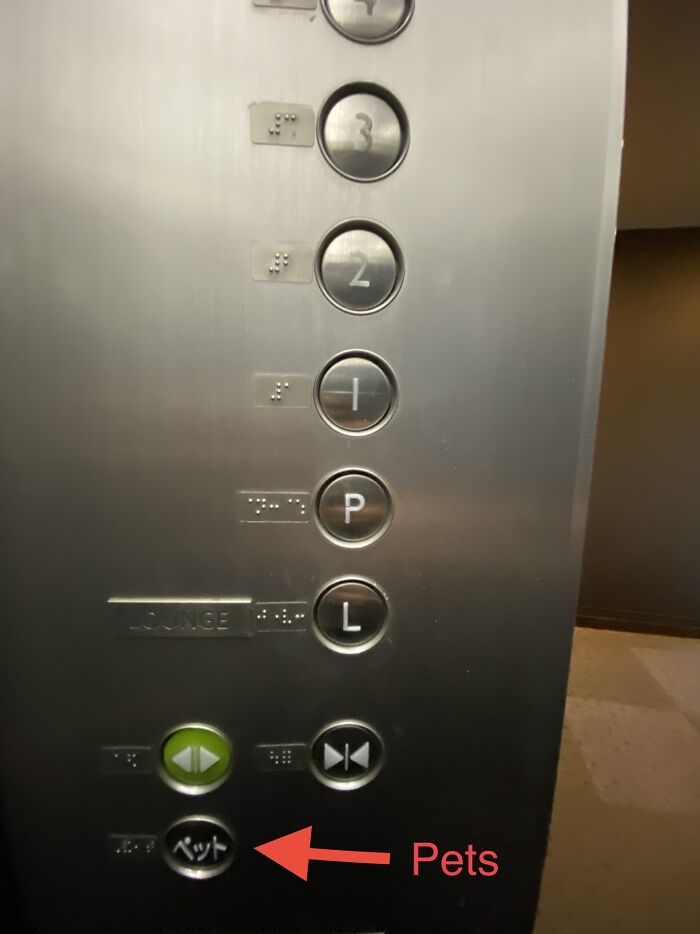 """""""Pets"""" Button On A High End Residential Building Elevator In Tokyo"""