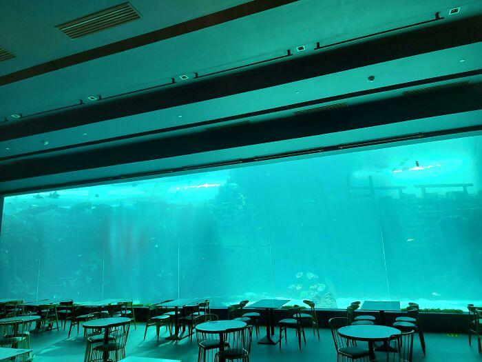 Empty Aquarium Restaurant, Made Me Feel Sad And Empty For Some Reason