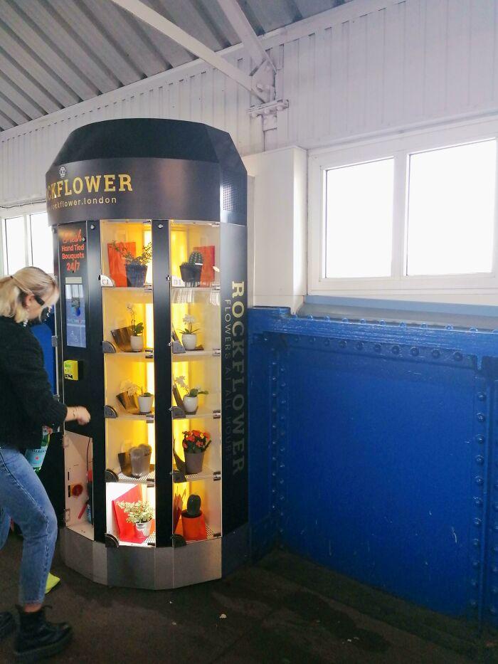 Máquina expendedora de plantas, vista en la estación de Clampham en Londres
