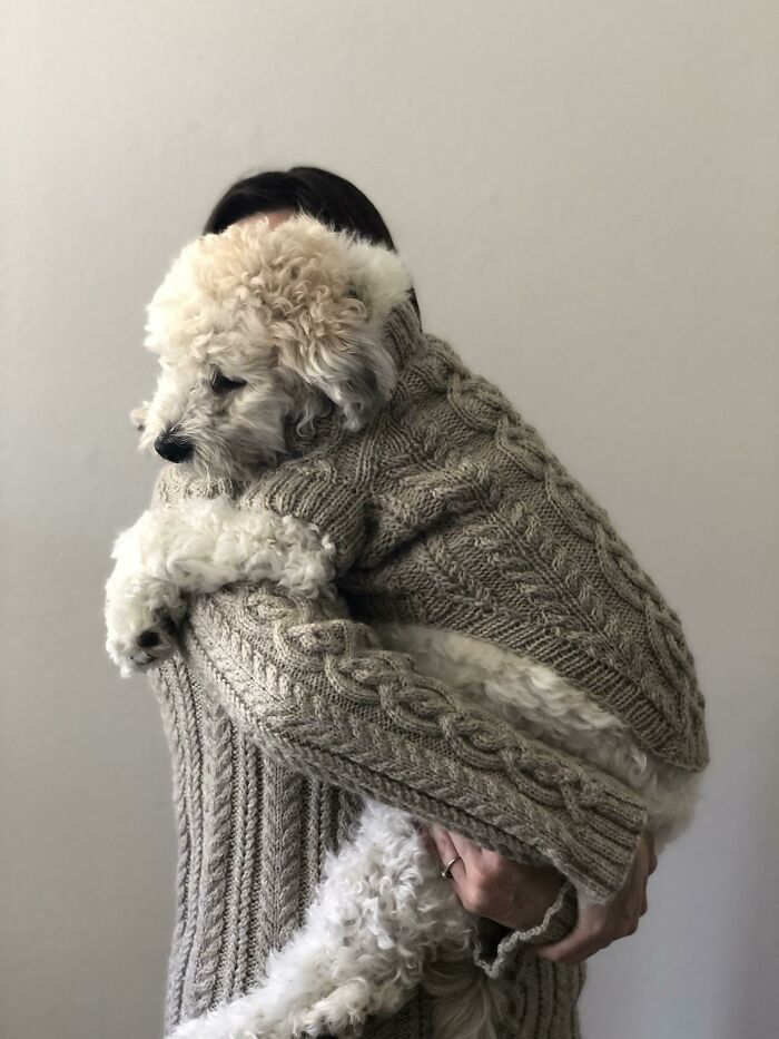 My Dog And I Now Have Matching Sweaters