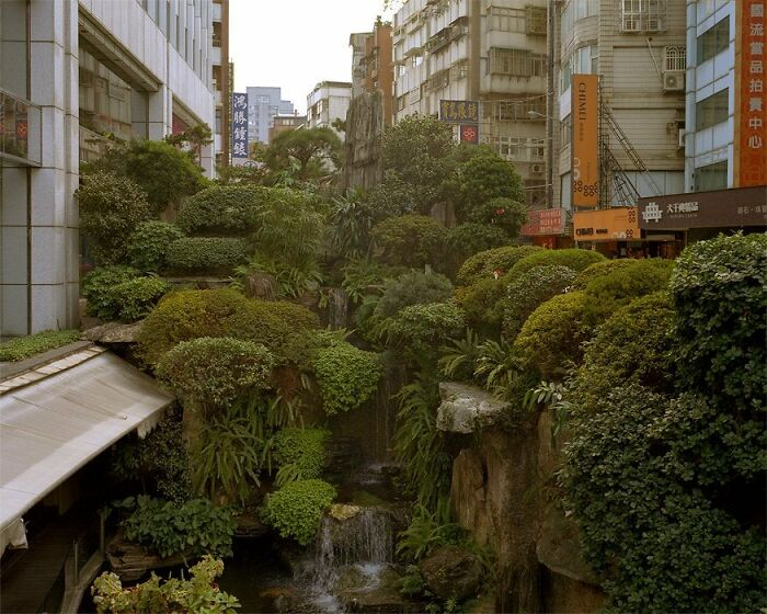 Una selva urbana literal, Taipei, Taiwán