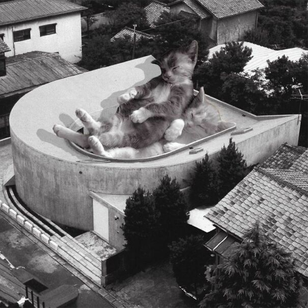 U-House; Toyo Itob, 1977 D. 1988, Tokyo, Japan