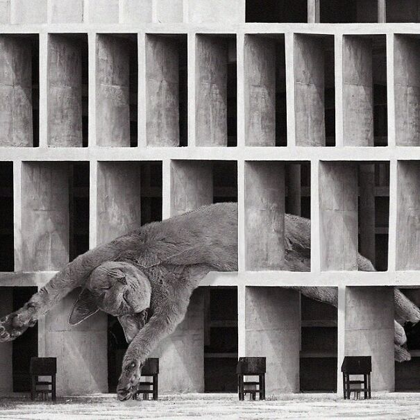 Tower Of Shadows; Le Corbusier, 1952, Chandigarh, India
