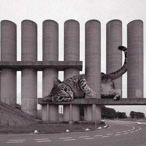 Rozenburg Wind Wall; Maarten Struijs, 1985, Rozenburg, Netherlands