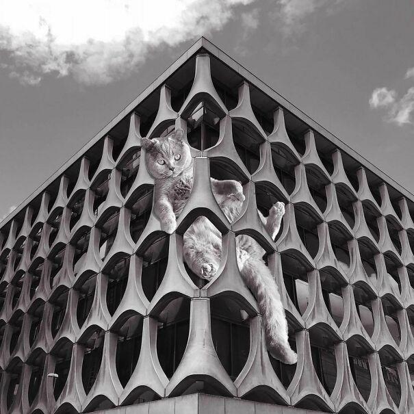 Libre - Sect. Bnp Paribas Fortis; Marcel Lambrich, C. Grochowski & D. De Laveleye, 1969-73, Brussels, Belgium
