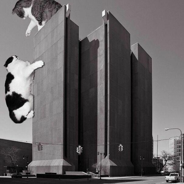 Buffalo City Court; Pfohl, Roberts And Biggie, 1974, Buffalo, New York